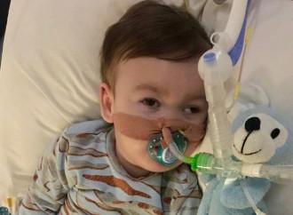 L'ospedale cambia idea su Alfie o mente alla famiglia?
