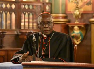 Sarah: «La Chiesa vive il mistero di Giuda, il tradimento della fede»