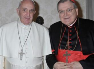 Il Papa nomina Burke giudice alla Segnatura