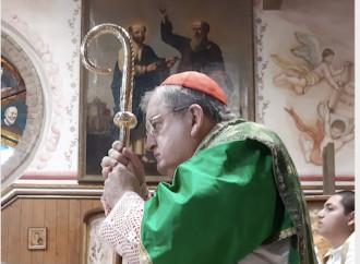 «Parole del Papa fuori dal Magistero, i vescovi chiariscano»