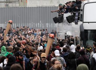 Cannabis, epidemia nascosta in un'Europa che dorme