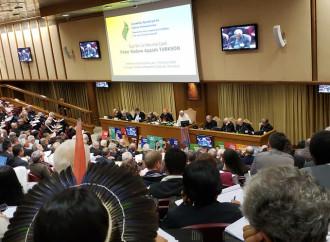 La contraddizione più evidente del Sinodo sull'Amazzonia