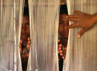 Trafficanti all'opera in Colombia e Zimbabwe