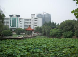Lieber e l'ambiguo rapporto degli scienziati con Pechino